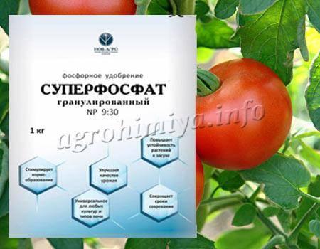 Суперфосфат для рассады томатов как разводить